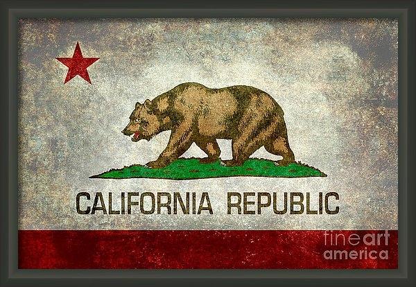 Bruce Stanfield - California Republic state flag retro style