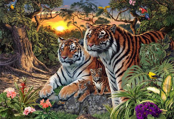 Steve Read - Hidden Images - Tigers