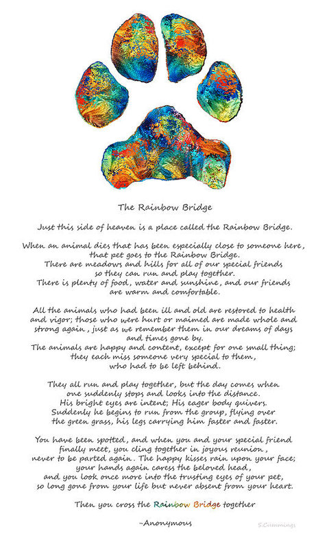 Sharon Cummings - Rainbow Bridge Poem With Colorful Paw Print by Sharon Cummings