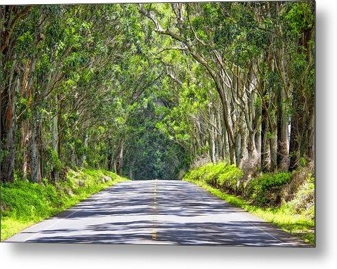 Mike Orso - Tree Tunnel  Kauai