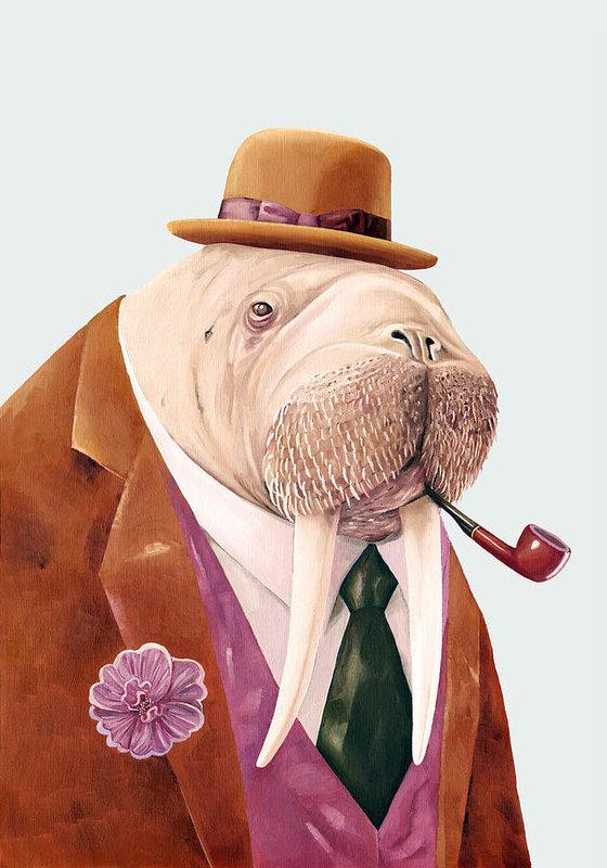 Animal Crew - Walrus