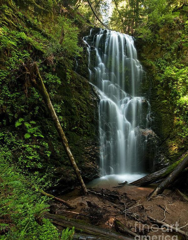 Matt Tilghman - Berry Creek Falls in Big Basin