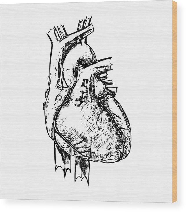 Russell Kightley - Heart
