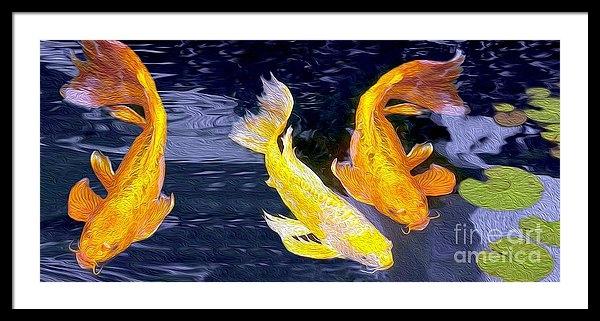 Jon Neidert - Koi Fish