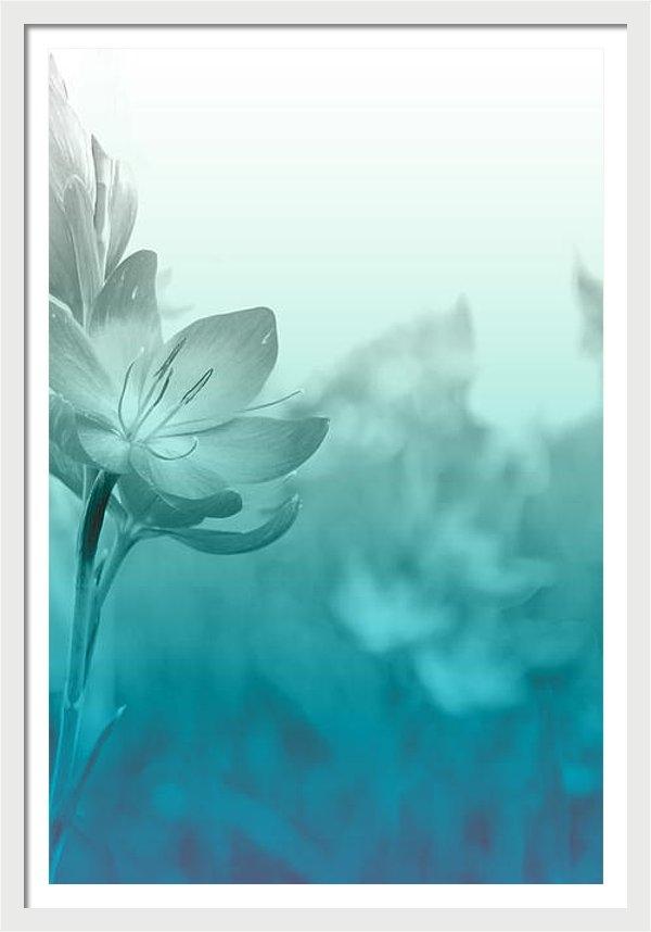 Barbara  White - Sea Green Haze
