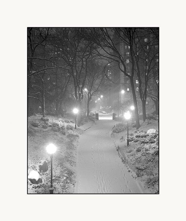 Dave Beckerman - Night Storm New York