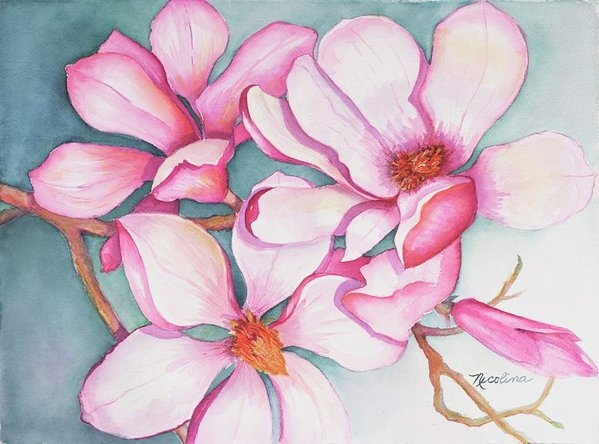 Nicolina Rinaldi - Johnys Magnolias 2
