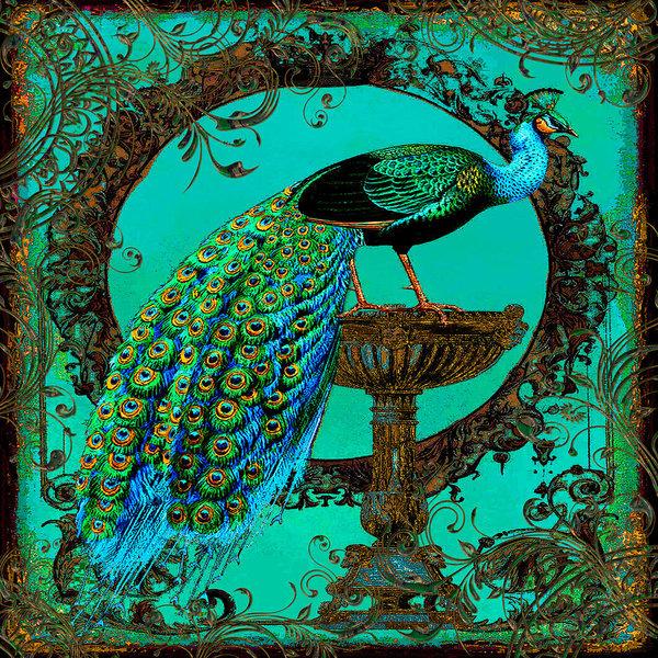 Legend Imaging - Teal Blue Vintage Peacock
