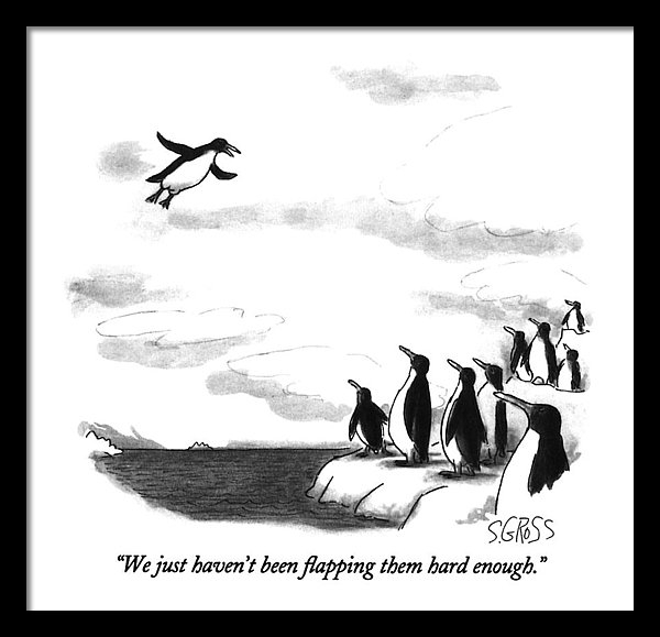 Sam Gross - We Just Haven't Been Flapping Them Hard Enough