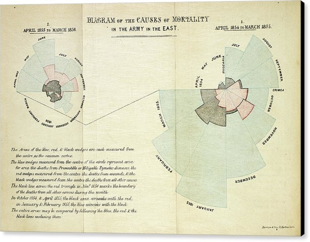 British Library - Causes Of Death In The Crimean War
