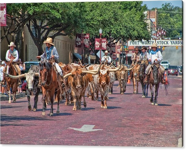 David and Carol Kelly - Cowtown Cattle Drive