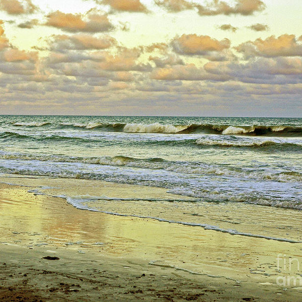 Lydia Holly - Afternoon Beach Reflections