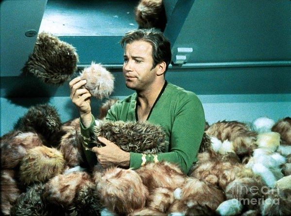 The Titanic Project - Captain Kirk Up To His Chest In Tribbles