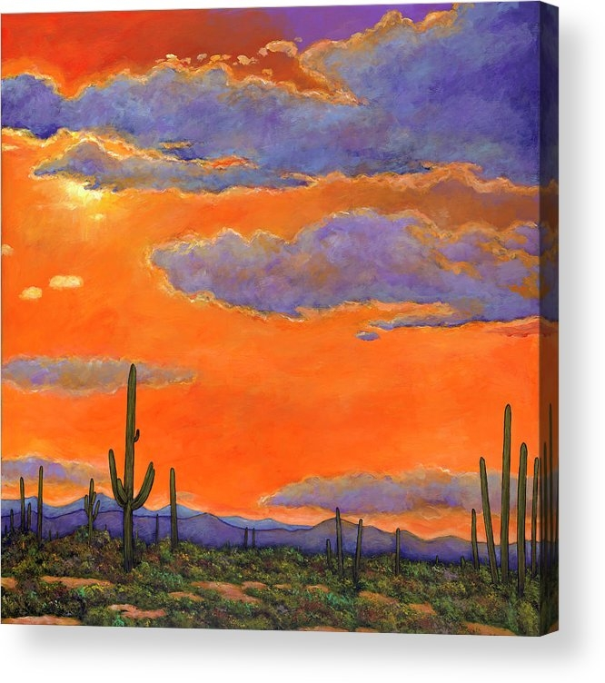 Johnathan Harris - Saguaro Sunset