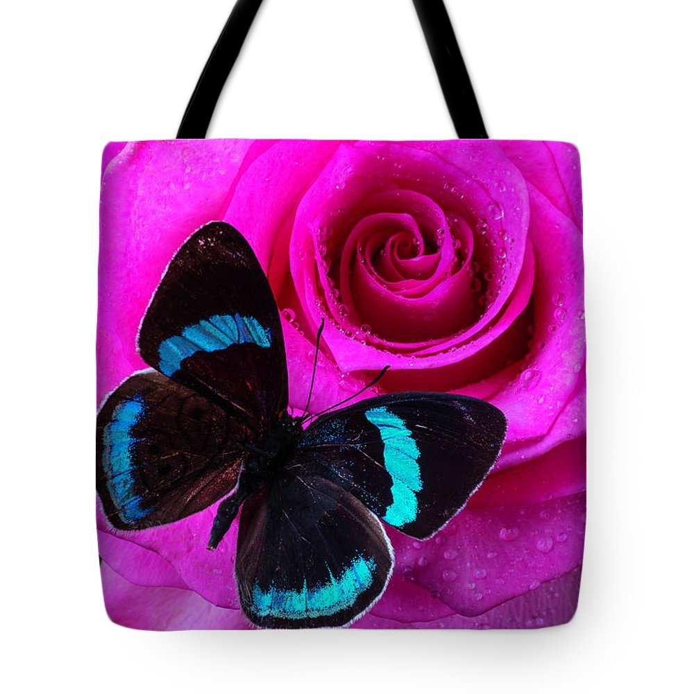 Pink Rose And Black Blue Butterfly by Garry Gay