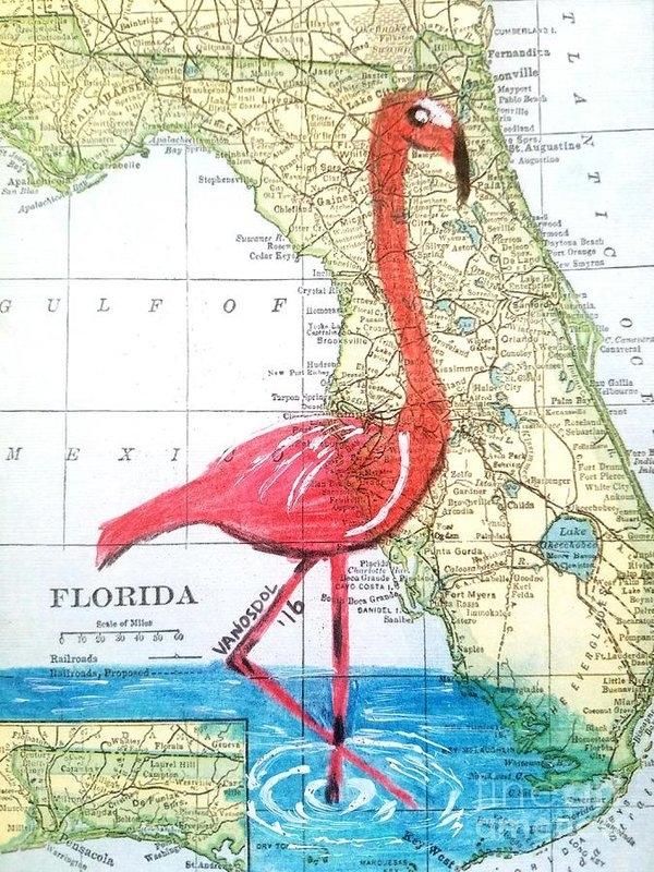 Scott D Van Osdol - Vintage Florida Map Flamingo