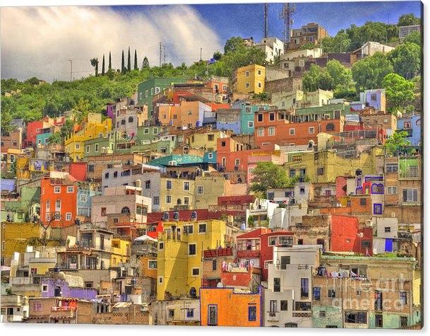 Juli Scalzi - Guanajuato Hillside