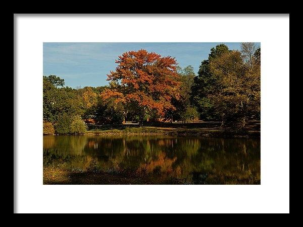 William Kimble - Westbury Pond