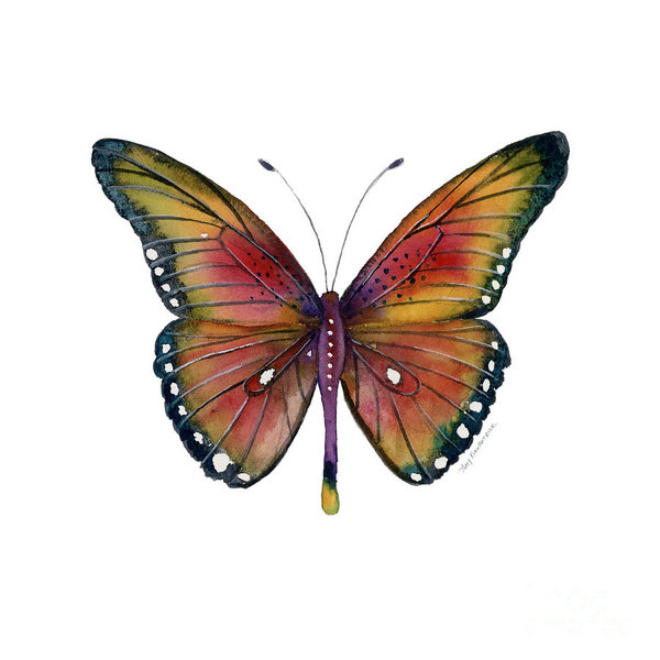 Amy Kirkpatrick - 66 Spotted Wing Butterfly