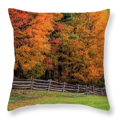 Roadside view of Vermont fall colors Throw Pillow
