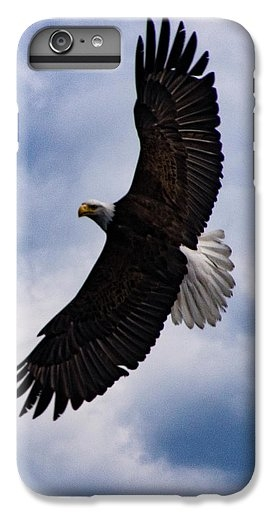 Prince Rupert Soaring Eagle by Louise Magno