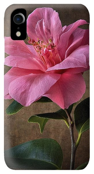 Pink Camellia by Endre Balogh