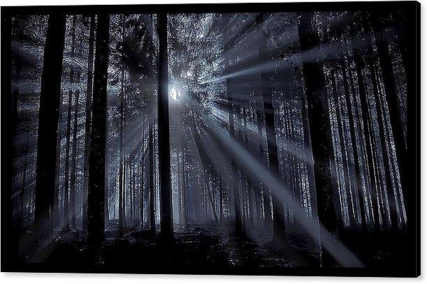 Daybreak by Skipper Elliott Memmott