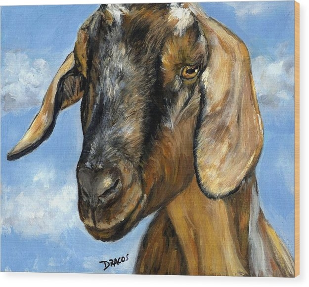 Nubian Goat Portrait by Dottie Dracos