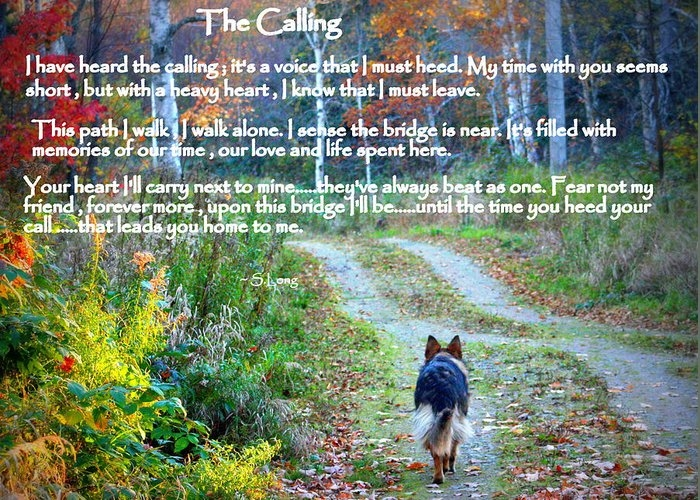 Paw Prints The Calling by Sue Long