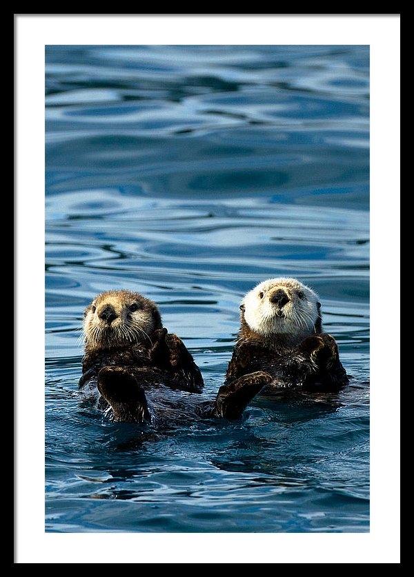 Sea Otter Pair by Adam Pender