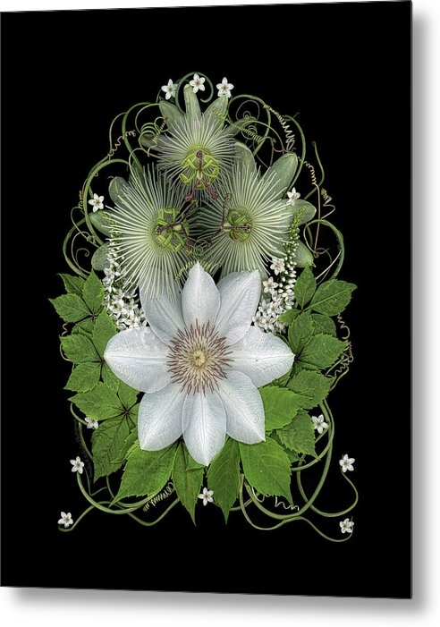 Passionflower bouquet 01 by Sandra R Schulze Photography