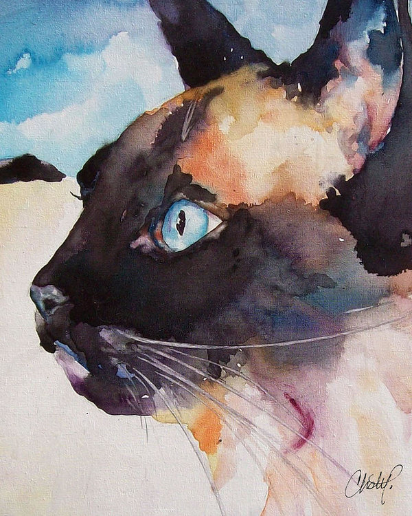 Seal Point Siamese Cat by Christy Freeman Stark