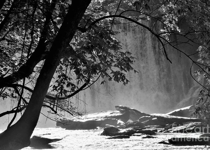 Vickery Creek Waterfall in Black and White by Mary Ann Artz