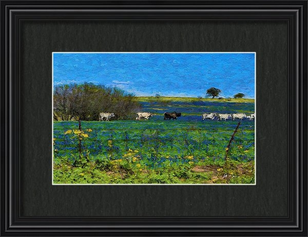 Blue Bonnets, Beef and Blue Skies by Brent Groves