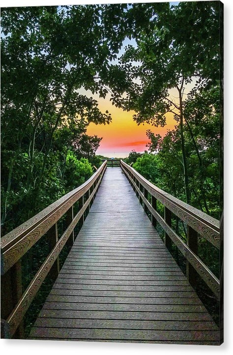 Boardwalk to Paradise by Camille Lucarini