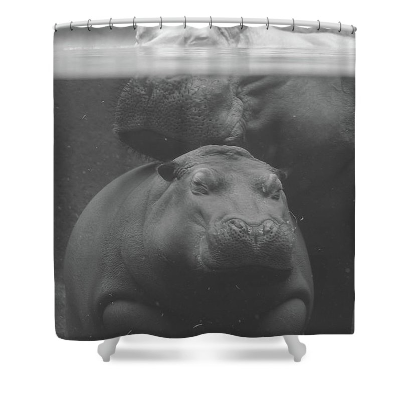 Hippo Madonna by Becky Ross McRae