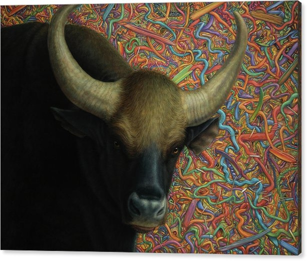 Bull in a Plastic Shop by James W Johnson