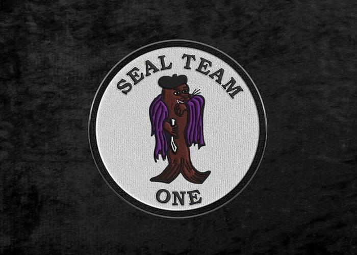 U. S. Navy S E A Ls - S E A L Team One -  S T 1 Patch over Black Velvet by Serge Averbukh