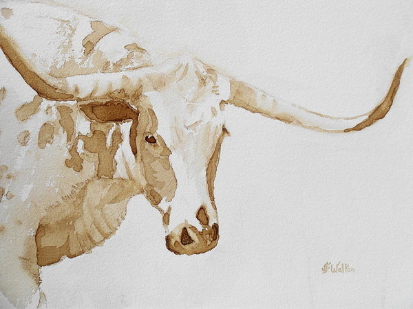 Longhorn by Judy Fischer Walton