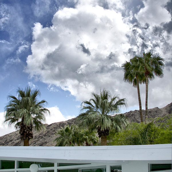 TUXEDO CIRCLE AFTERNOON Palm Springs by William Dey