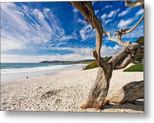 Beach View Carmel by the Sea California by George Oze