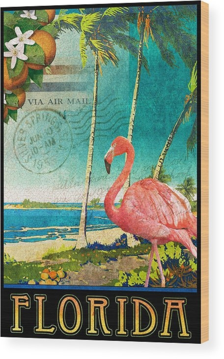 florida flamingo beach poster by R christopher Vest