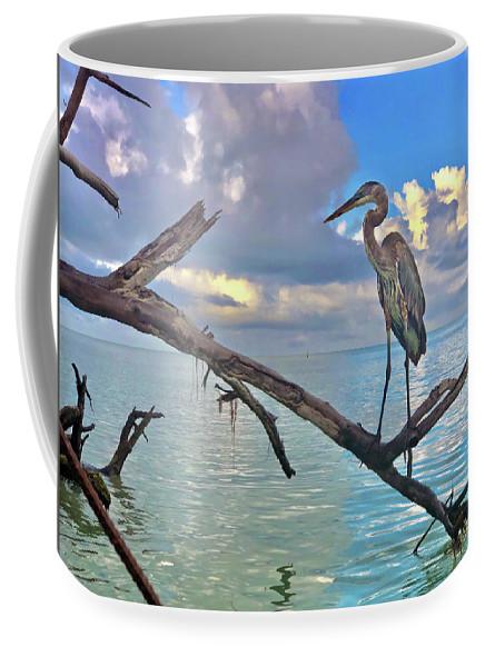 Great Blue Heron by Robb Stan