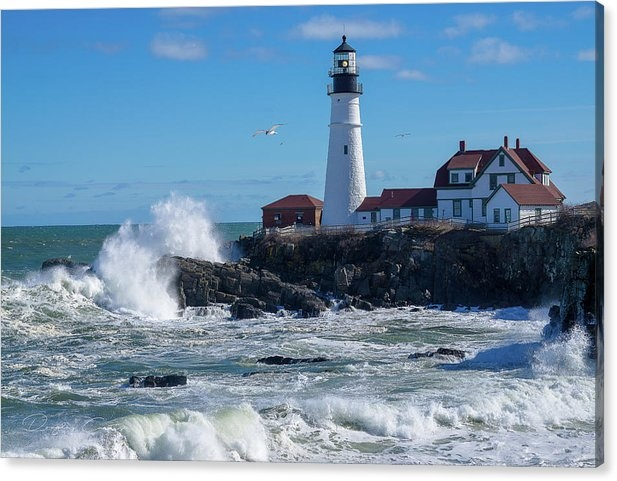 Maine Beauty by Douglas Curtis Photography