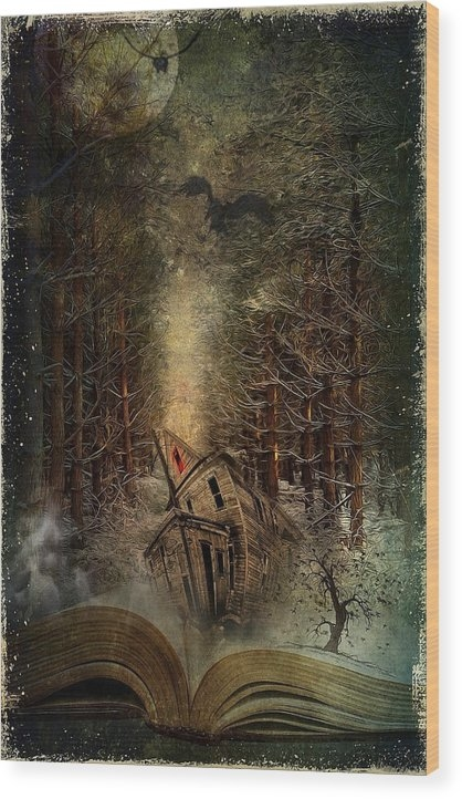 Night Story Wood Print