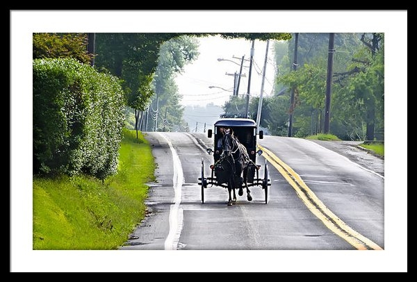 Bill Cannon - Amish Buggy in Lancaster ... Print