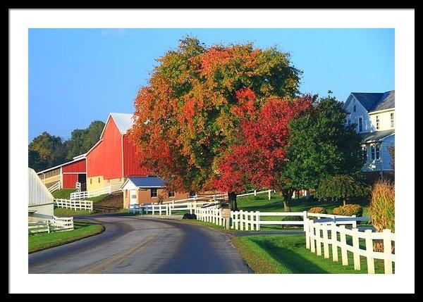 Dan Sproul - Amish Barn In Autumn Print