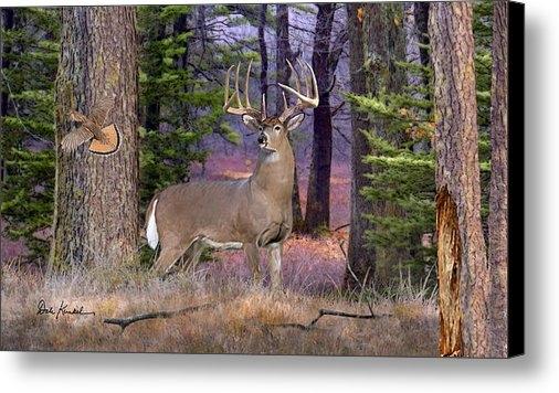 Dale Kunkel Art - Whitetail Deer Art - Nort... Print