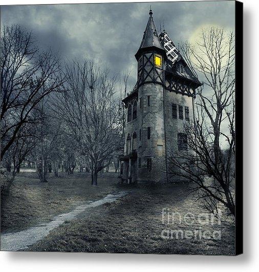 Jelena Jovanovic - Haunted house Print