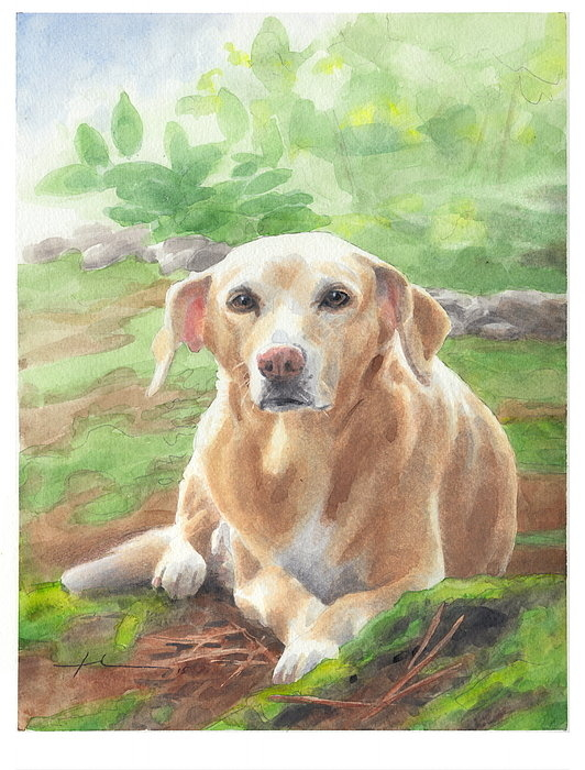 Mike Theuer - Yellow Labrador In A Gard... Print